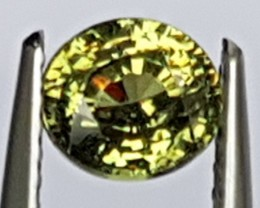 1.09cts, Demantoid Green Garnet,  Untreated,