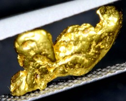 3.6CTS AUSTRALIAN GOLD NUGGET KALGOORLIE TBG-2695