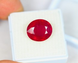 9.49ct Blood Red Color Ruby Oval Cut Lot LZB33
