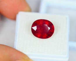 9.02ct Blood Red Color Ruby Oval Cut Lot LZB32