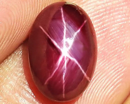 8.17 Carat Star Ruby - Gorgeous