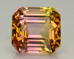 AAA Grade 8.78 ct Bi Color Tourmaline Mozambique SKU.8