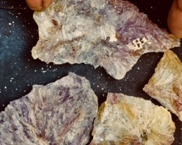 Parcel Amethyst flowers Specimens  PPP 1872