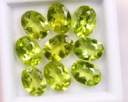 Lot 12 ~ 10.96Ct 7x5mm Natural VS Clarity Green Color Himalayan Peridot