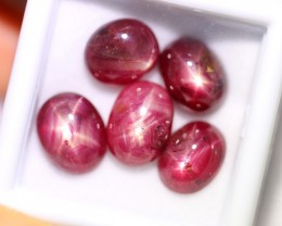Lot 13 ~ 15.91Ct 8x7mm, 9x7mm Natural 6 Rays Red Star Ruby