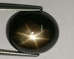private auction GENUINE 12.00 CTS Natural Unheated Black-Star-Sapphire Six