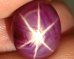 10.77 Carat Star Ruby - Gorgeous