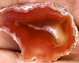 55CTS BEAUTIFUL AGATE GEODE MEXICO RG-2603