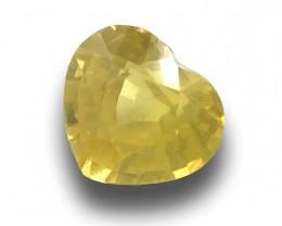 Natural Yellow Sapphire|Loose Gemstone| Sri Lanka - New