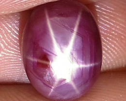 7.92 Carat Star Ruby Cabochon - Gorgeous