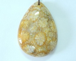 118.5ct Natural Indonesian Coral Tear Shape Pendant(18010806)