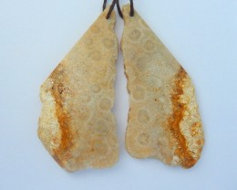 Natural Nugget Indonesian Coral Earrings,Personalized Stone Earrings For He