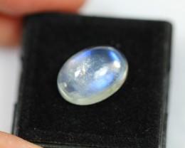NR Lot 15 ~ 7.31ct Polished Rainbow Moonstone