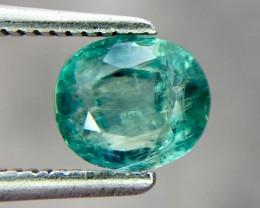 Rare Clarity 1.07 Cts Grandidierite World Class Rare Gem ~ Madagascar
