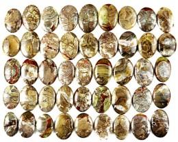 Rare Mushroom Rhyolite Cab lot 1485.50 cts