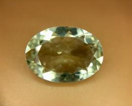 9.10 Crt Natural Amethyst Prasoilite Faceted Gemstone (R 127)