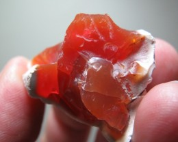 43.98 ct Fire Opal Rough from Honduras