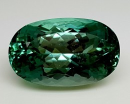 27.85Crt Top Green Spodumene Best Faceted Gemstones GS09