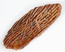 11.30Cts  Fossil Dinosaur Skin  Morocco SU 260