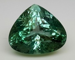 22.70CrtTop Green Spodumene Best Faceted Gemstones GS44