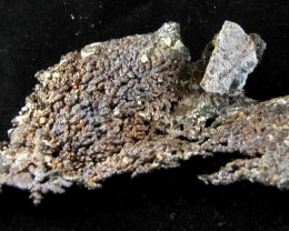 Native Copper Arborescent Ray Mine Pinel co., Arizona list $250.00