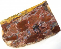500.00 CTS PIETERSITE ROUGH SLAB  -NAMIBIA [F7294]
