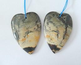 Unique Beautiful Chohua Jasper,Natural Chohua Jasper Heart Shape Earrings,B