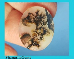 20mm Dendritic Agate AAA quality Custom  Cut 20 by 15 by 2mm