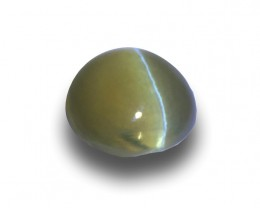 Natural Unheated Chrysoberyl Cat's Eye|Loose Gemstone| Sri Lanka -