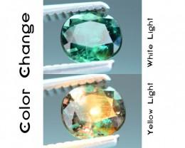Rare 1.07 ct Blueish Green Garnet Color Change Bekily Mine Madagascar SKU-1
