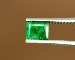 0.45 Crt Natural Swat Emerald Faceted Gemstone (943)