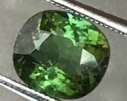 1.7 ct Lusterous Green Tourmaline, Africa - NR10