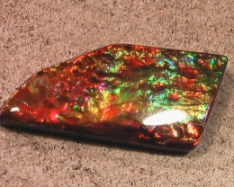 EXCELLENT COLLECTOR 'rare pinks' Natural Ammolite Gemstone