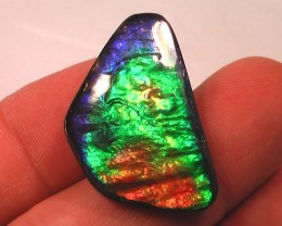 EXCELLENT PURPLES RAINBOW Natural Ammolite Gem 'Top Quality'