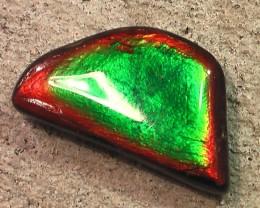 FANTASTIC PATTERN & COLOR Natural Ammolite Gem 'green turns blue'