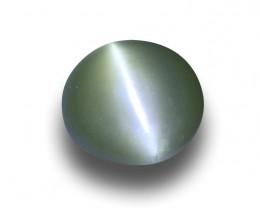Natural Unheated Chrysoberyl Cat's Eye|Loose Gemstone| Sri Lanka -
