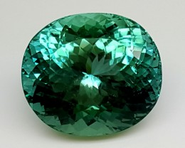 24.80Crt Top Green Spodumene Best Faceted Gemstones GS19
