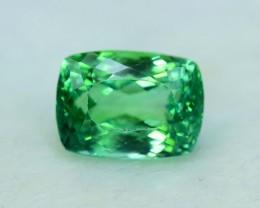 15.65 cts Octagon Shape Cut Lush Green Spodumene Gemstone From Afghanistan