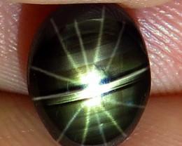 4.21 Carat 12 Ray Thailand Black Star Sapphire - Gorgeous