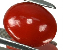 ~UNTREATED~ 2.31 Cts Natural Italian Red Coral Cabochon (10.3 x 8 mm)
