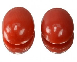 ~UNTREATED~ 5.52 Cts Natural Italian Red Coral Cabochon 2Pcs (10.3 x 8.2 mm
