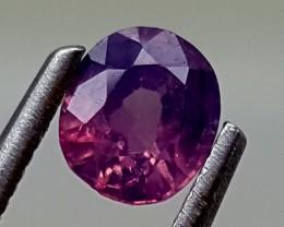 0.55 Cts  UNHEATED SAPPHIRE  Best Grade Gemstones JI (6)