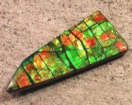 EXCELLENT BRIGHT 'Dragonskin' Natural Ammolite Gemstone