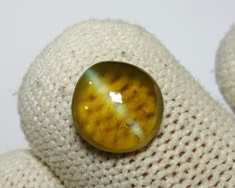 CERTIFIED 2.28 CTS NATURAL BEAUTIFUL HONEY COLOR CATS EYE CHRYSOBERYL SRI L