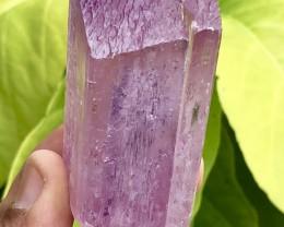 646.25ct Pink Purple Kunzite Crystal Specimen Shigar Pak
