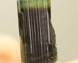 Bi Color Tourmaline Crystal From Pakistan In NR