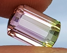 4.20cts, Bi-Color Tourmaline, Green / Pink, Clean, Untreated