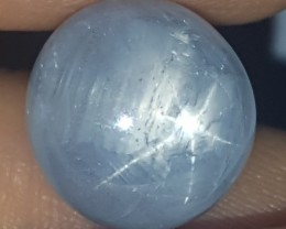13.81cts Burmese Blue Star Sapphire, Unheated, Untreated,