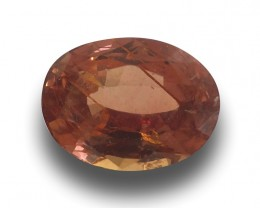 Natural unheated Pinkish Orange Sapphire|New| Sri Lanka
