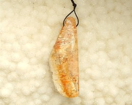 60ct Natural Indonesian Fossil Coral Pendant (18031422)
